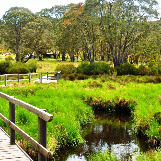 Top things to do Gloucester Barrington Tops