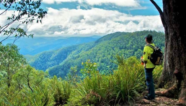 Things to do Gloucester Tops National Park