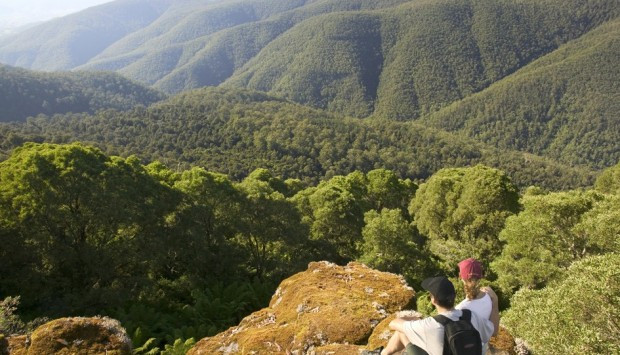 Things to do Barrington Tops Gloucester